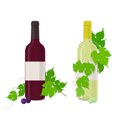 bottles of red and white wine with grape vines vector image