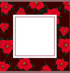 red poinsettia on red banner card2 vector image