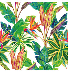 Tropical jungle birds paradise and leaves vector