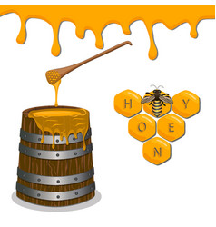 yellow honey vector image