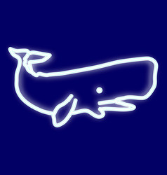 the image of a whale vector image vector image