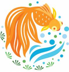 gold fish swimming vector image vector image