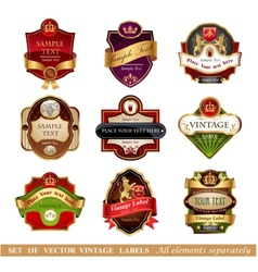 Vctor luxury labels vector image
