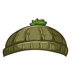 A bonnet vector