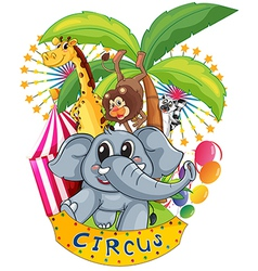 Animals in circus vector