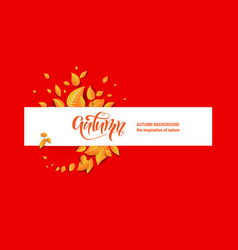 beautiful fall leaves banner vector image