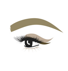 Eyebrow and eye with eyelashes makeup for beauty vector