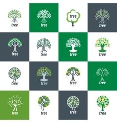 Logo tree vector
