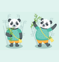 set cute pandas with bamboo vector image