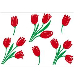 Set of tulips vector image
