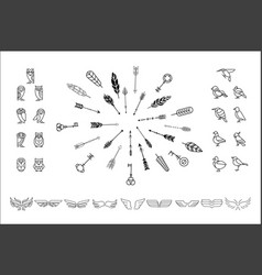 set various decor elements owls birds vector image