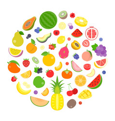 colourful fruits and berry vector image