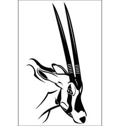 Gemsbok antelope vector image