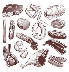 hand drawn meat sketch meat products collection vector image