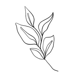 minimalist plant single continuous art leaf vector image