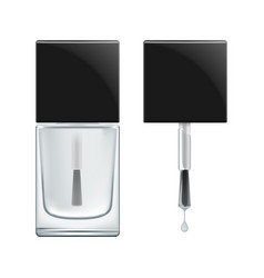Nail polish bases coat vector
