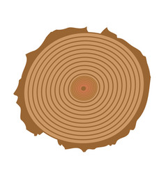 tree cut tree cut realistic icon vector image