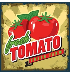 vintage tomato vector image