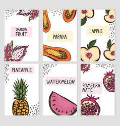 set six card templates with hand drawn fruits vector image