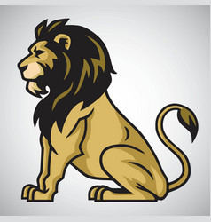 wild lion king vector image
