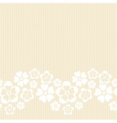 Horizontal white lacy flower border vector image