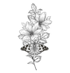hand drawn flowers and butterfly vector image