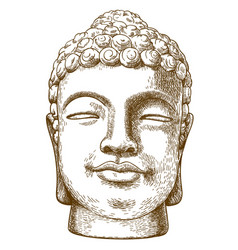 Engraving drawing of stone buddha head vector