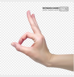3d female hand shows okay realistic vector