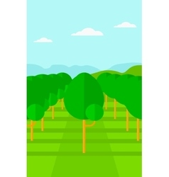 Background of garden with fruit trees vector