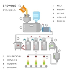 Beer process Brewing infographic or brewery vector
