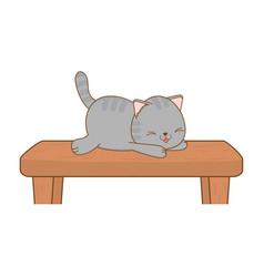 Cute little cat in shelf kawaii character vector