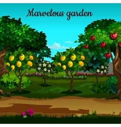 Garden with citrus and green trees in blossom vector image vector image