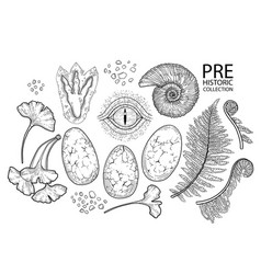 graphic prehistoric collection vector image
