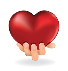 holding love heart vector image