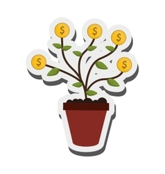 money plant icon vector image