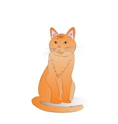 orange cat vector image