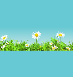 panoramic background cartoon green glade vector image