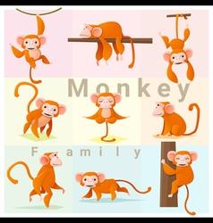 set of monkey family vector image