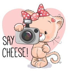 Cat with a camera vector image
