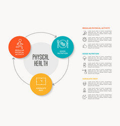 infographic about healthy lifestyle vector image