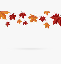 autumn brown maple leaf fall isolated on white vector image