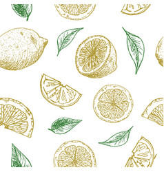drawing lemons seamless background vector image