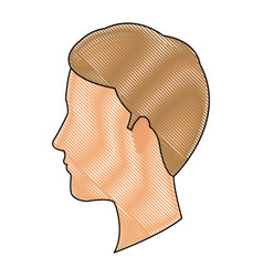 Drawing profile head guy young character vector