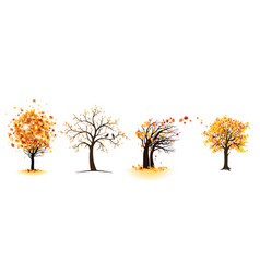 Fall maple trees set vector