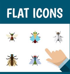 Flat icon housefly set of bluebottle tiny fly vector