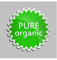 green sticker pure organic vector image