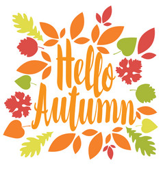 inscription hello autumn in a frame of leaves vector image