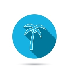 Palm tree icon Travel or vacation symbol vector image