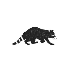 raccoon icon isolated on white background wild vector image