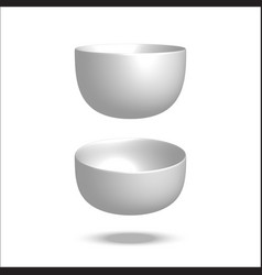realistic plate vector image